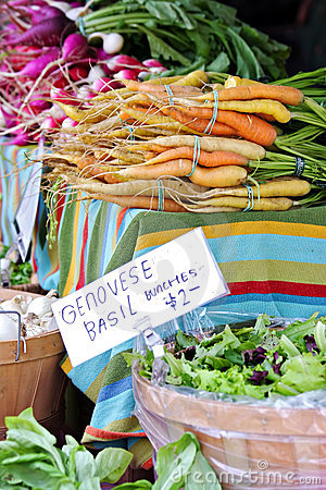 Farmer s Market Vegetables