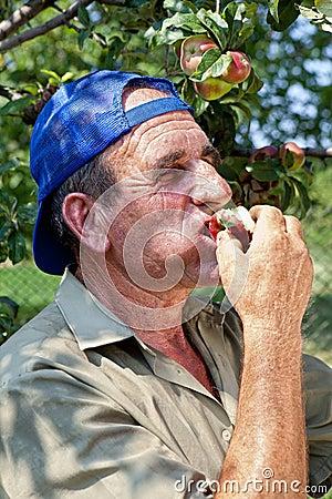Farmer tasting apples