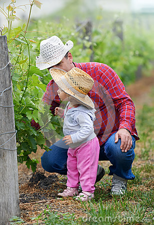 Free Farmer Teaching Child How To Grow Grapes Royalty Free Stock Images - 55121309