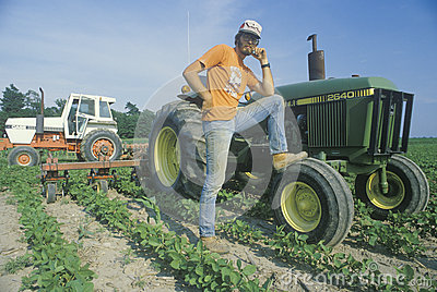 Farmer tending to soybeans by a tractor Editorial Stock Image