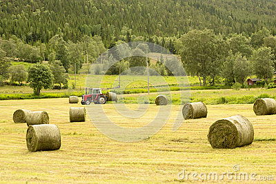 Farmer on tractor with hay bales