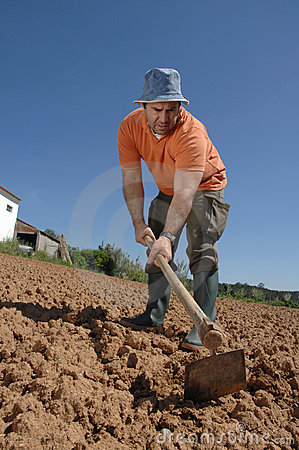 Free Farmer Working On The Farm Royalty Free Stock Photos - 14125798