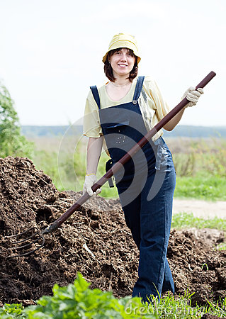 Farmer works with manure