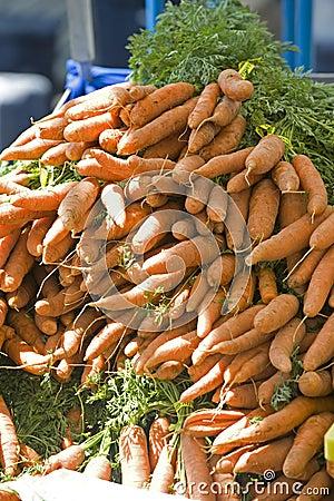 Farmers Market fresh carrots
