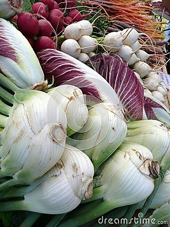 Farmers Market vegetables: fennel