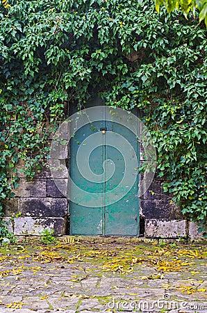 Free FarmHouse Green Door Royalty Free Stock Image - 36319236