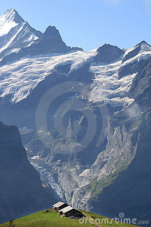Free Farming In The High Mountains Of Switzerland Royalty Free Stock Images - 12216429