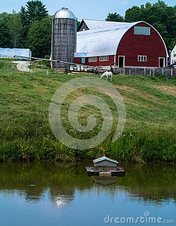 Farming Landscape with pond barn and silo