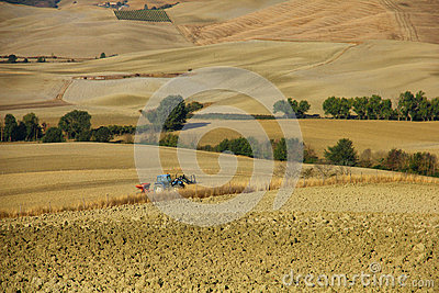 Farming in Tuscany
