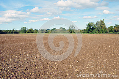 Farmland Soil