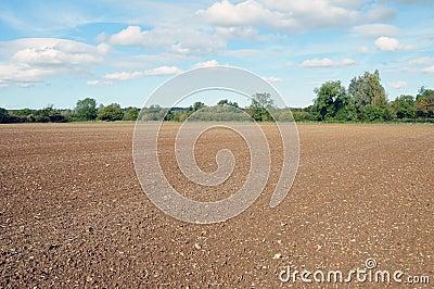 Farmland Soil