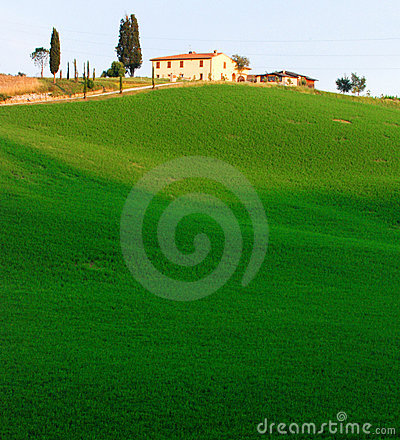 Farmland in Tuscany