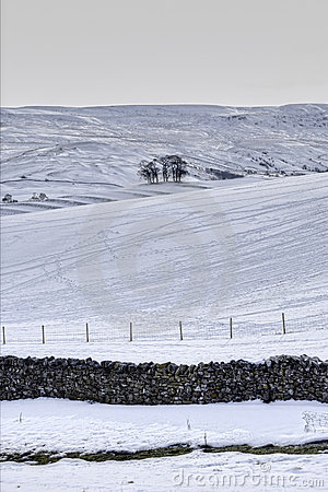Farmland in winter