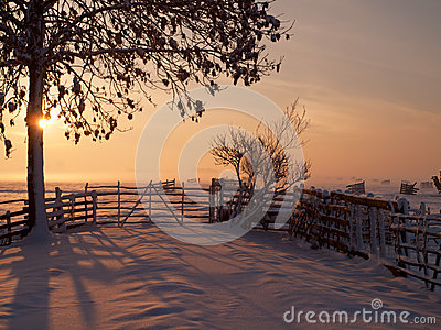 Farmland winter sunset