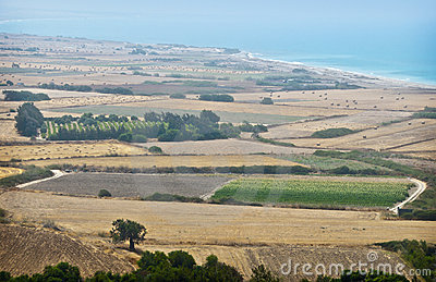 Farms on the Island of Cyprus, in Coastal Mist