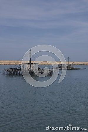 Farms of sea