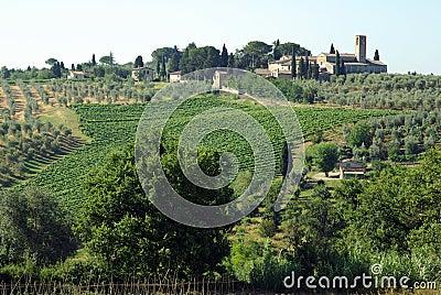 Farms in Tuscany, Italy