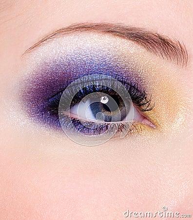 Free Fashion Makeup Of A Female Eye Stock Photo - 12239500