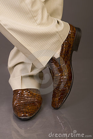 Free Fashion Shoes Royalty Free Stock Photography - 16960487