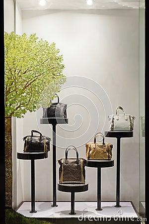 Free Fashion Showcase Stock Photography - 22938402
