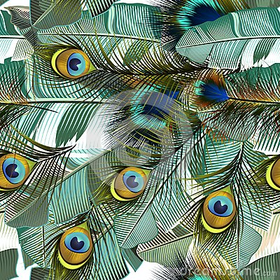 Free Fashion Tropical Pattern With Realistic Peacock Feathers And Ban Stock Photos - 119584483