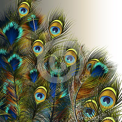 Free Fashion Vector Peacock Feathers Illustration In Blue And Green C Royalty Free Stock Image - 119585006
