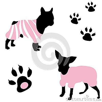 A fashionable dog