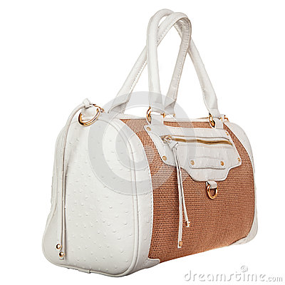 Fashionable female handbag