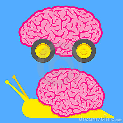 Fast brain on wheels and slow snail brain