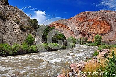 Fast flowing stream in Utah