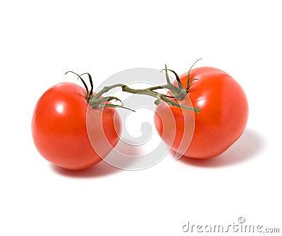 Fasten tomato isolated on white background