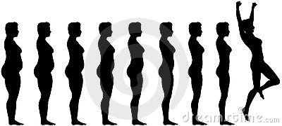 Fat Fit Diet Weight Loss Success
