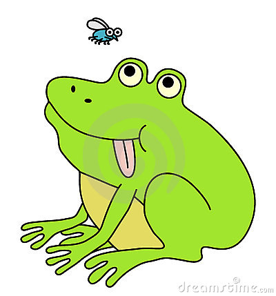 Fat funny frog