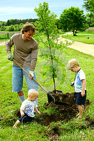 Father And His Children Planting Tree Royalty Free Stock