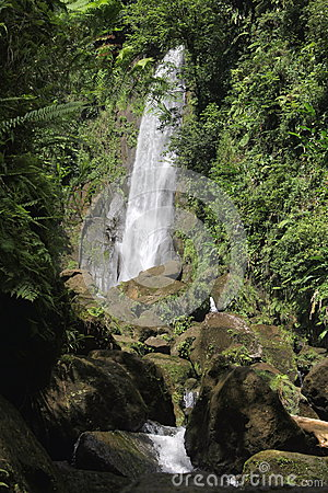 Father Waterfall