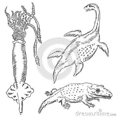 Fauna-palaeontology