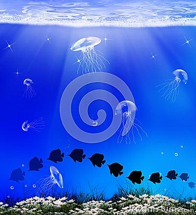 Fauna sob o mar