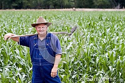 Fazendeiro nos campos de milho
