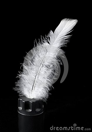 Feather of bird in an inkpot