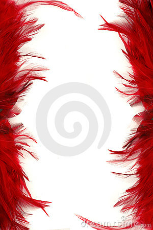 Feather Borders Royalty Free Stock Photography Image