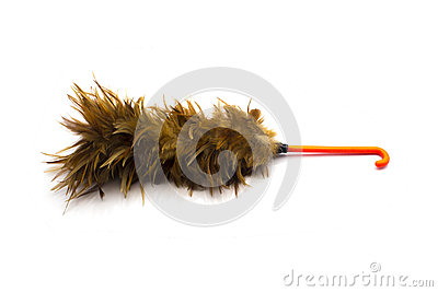 Feather is broom   on