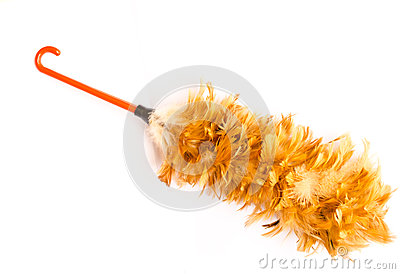 Feather broom