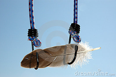 Feather and bungee cord