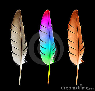 Free Feather (clipping Path)  Stock Photos - 16006363