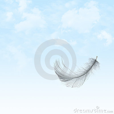 Feather flying in sky