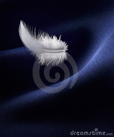 Feather and satin