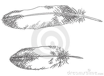 Feathers + vector EPS file