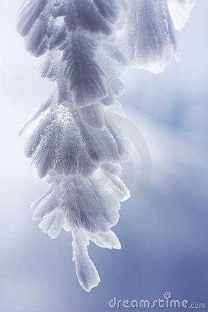 Free Feathery Icicles  3 Stock Photography - 5259922