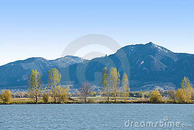 Feathery Trees, Lake Shore and Blue Mountains