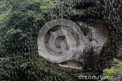 Featured rock like footprint of huge animal